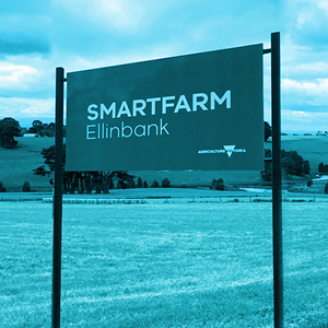 Smartfarm Ellinbank Case Study